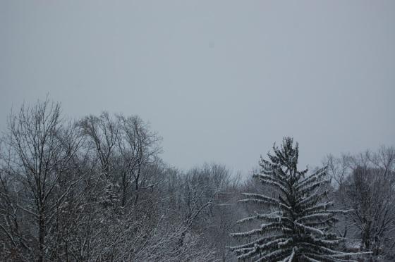 Da snowy sky